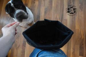 Hunter Test Leckerlitasche Guerteltasche Produkttest Malous mannigfaltige Welt MMW Shar Pei Hund