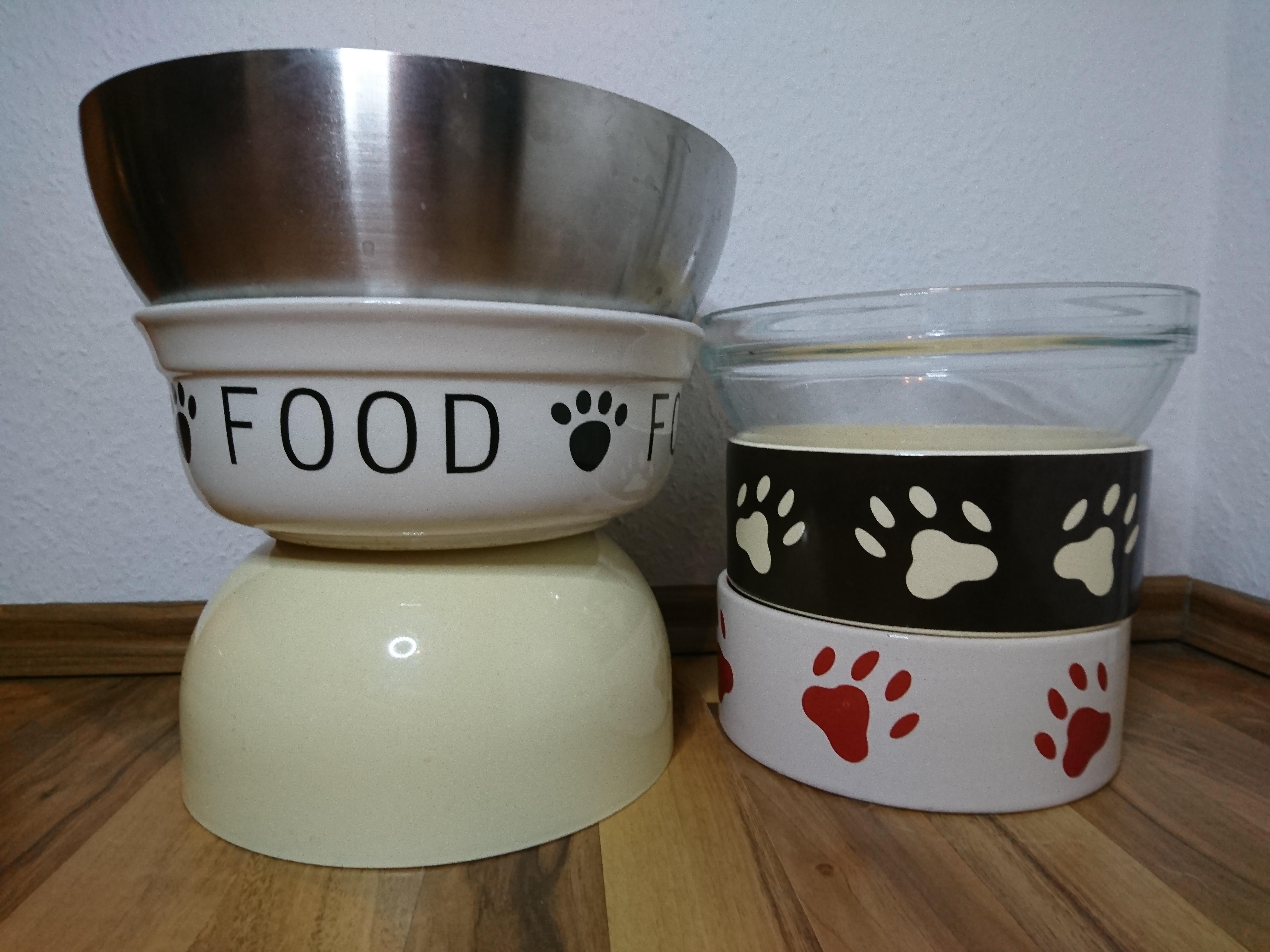 Napf Futter Füttern Glas Malous Rabaukenbande Keramik Porzellan Metall Napf Plastik Katze Hund Blog