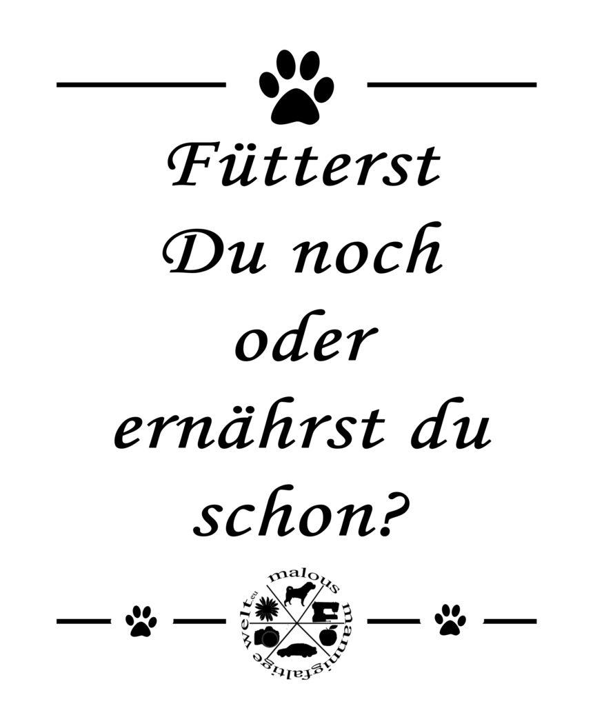 Futter Fuettern Hund Hunde Katze Kater Essen Barf Trockenfutter Rohfutter Nassfutter Prey Pferd Blog