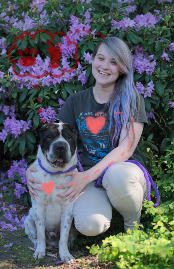 Hundeblog Shar Pei Dog Hund Adoption Kauf Anschaffung Hundeleben Malou Rabaukenbande Herz und Kopf Bauchgefühl objektiv MMW