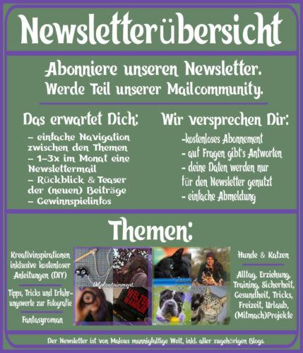 Newsletter oben Hunde Katzen Tier Kreativ DIY Fotografie Blog Pferd Shar pei Kater Tipps Alltag Up to Date Roman Fantasy Seite