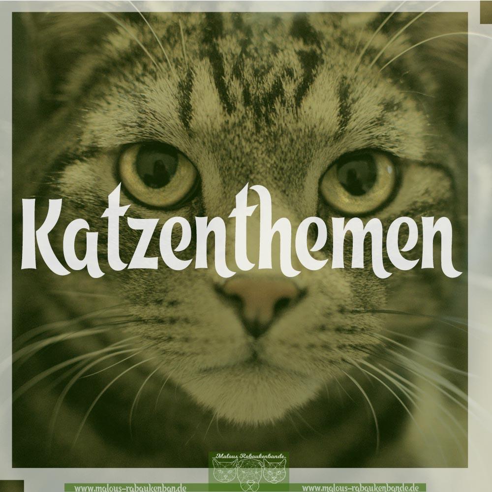 Hunde Katzen Tier Blog Kater Ruede Shar Pei Rabaukenbande Kategorien Uebersicht