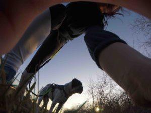 Rabaukenbande-Hund-Hundeblog-Tierblog-ehrlich-pet-dog-blog-Tagebuch-Shar-Pei-Kingston-Alltag-Leben-Fotografie-sport
