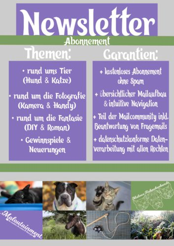 Pop up Newsletter info Hund Katze Tier Shar Pei Pferd Fotografie Natur DIY Kreativ Blog Deutschland Handy Kamera DSLR Tipps Tricks
