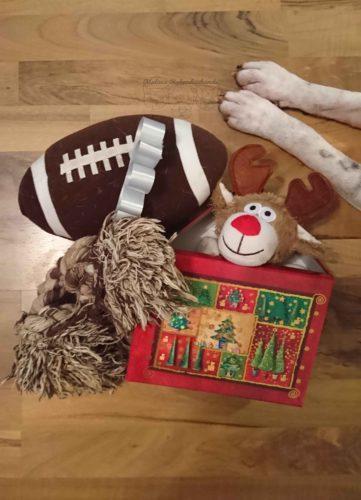 Dezember Tagebuch Hundeblog Hund Shar Pei Kingston Rabaukenbande Weihnachtsbaum Weihnachten Feiertag Geschenke