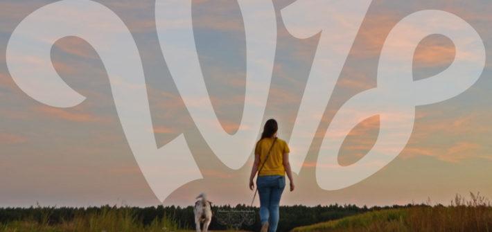 mL Jahresvorschau 2018 Rabaukenbande Shar Pei Hund Hunde Blog Katze Kater Ziele 2017 Blogger Deutschland Vertrauen Gesundheit Fotografie