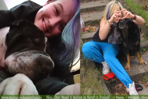 Rabaukenbande Hunde Katzen Blog Shar Pei Freizeit Arbeit Buero , Seelenhunde Herzenshunde Golden Retriever Mischling Gegensaetze Definition Freundschaft Gegenueberstellung