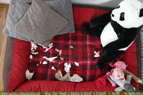 Rabaukenbande Hunde Katzen Blog Tiere Shar Pei Freizeit Arbeit Buero , DIY Do it yourself basteln Upcycling Klopapierrolle Haushaltsrolle Intelligenz Spielzeug Beschaeftigung