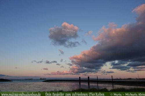 Urlaub am Meer Nordsee in Cuxhaven mit Hund-bei der Familie mit fremden Hund wohnen Huendin und Ruede Spaziergang bei Sonnenuntergang