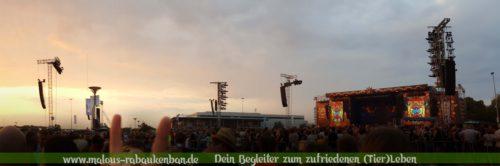 Zufrieden mit Tieren leben Hunde Katzen Blog-Rabaukenbande Punk Rockabilly Konzert Tote Hosen Living End Freiburg im Breisgau Handyfoto Lets rock