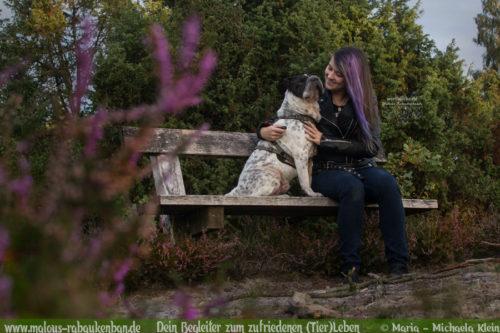 Fotografie Nordsee Hundetreffen Shar Pei Leben mit Hund Blog Blogger-Rabaukenbande fuer Hunde Katzen Tiere Bilder in der Heide Niedersachsen Mueden