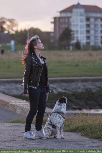Fotografie Nordsee Hundetreffen Shar Pei Leben mit Hund Blog Blogger-Rabaukenbande fuer Hunde Katzen Tiere mit Handy Niedersachsen Cuxhaven Kueste Hafen