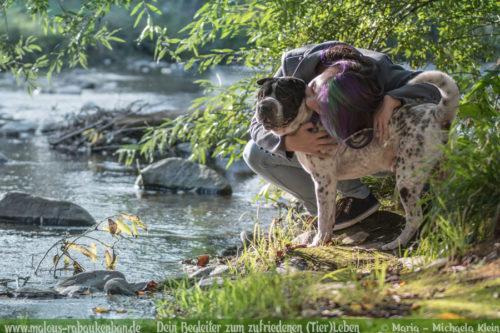 Tagebuch eines Hundes Shar Pei Urlaub Reise mit Hund Haustier-Rabaukenbande Tier Blog Krankheit Fotografie Katzen Labrador Schoko liebe Hunde Haltung Freunde