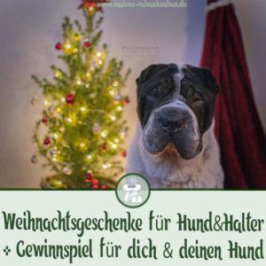 webseite Verlosung Gewinnspiel Geschenke Tipps fuer Hunde Liebhaber Weihnachten mit Hund-Tier Blog Rabaukenbande Begleiter zum zufriedenes Leben mit Katzen Shar Pei