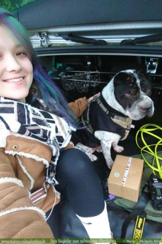 Rabaukenbande Hund Tier Katze Kater blog Erziehung glueckliches artgerechtes Leben - Gewinnspiel Weihnachten Feiertage Bloggerleben Ausfluege Autofahren