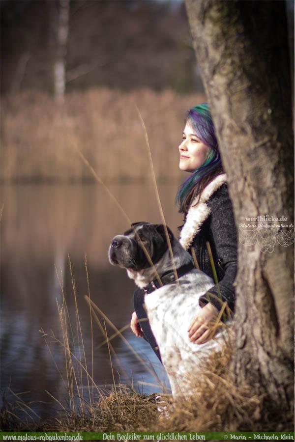 Februar Tagebuch 2019 Geschichten aus dem Leben Tipps-See Spaziergang-Hunde Blog Haltung Haustier Rabaukenbande Erziehung Training Wandern Urlaub