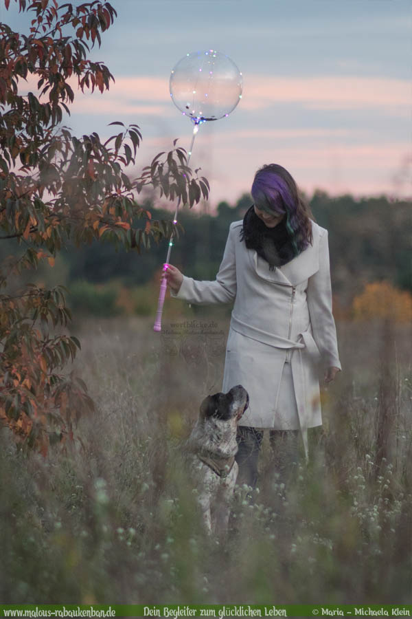 Oktober Tagebuch 2019 Geschichten aus dem Leben Tipps-Falkensee Urlaub-Hunde Blog Haltung Haustier Rabaukenbande Erziehung Training Wandern Urlaub
