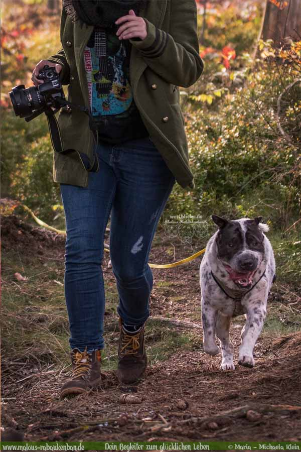 Oktober Tagebuch 2019 Geschichten aus dem Leben Tipps-Freizeit Fotografie-Hunde Blog Haltung Haustier Rabaukenbande Erziehung Training Wandern Urlaub