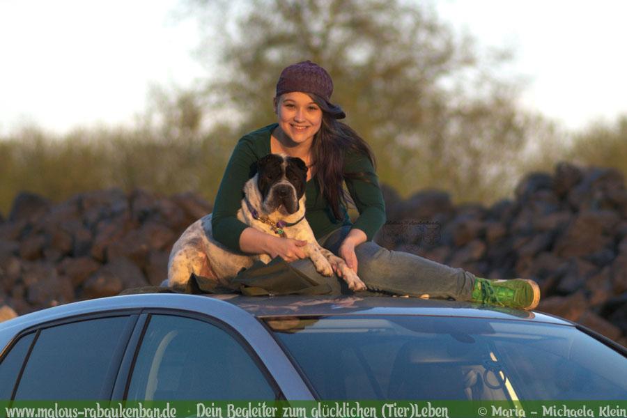 Stau Tipps keine Quaelerei sicher Auto fahren mit Hund-Shar Pei Halter-Hunde Blog Haltung Haustier Rabaukenbande Freizeit Urlaub Ausflug