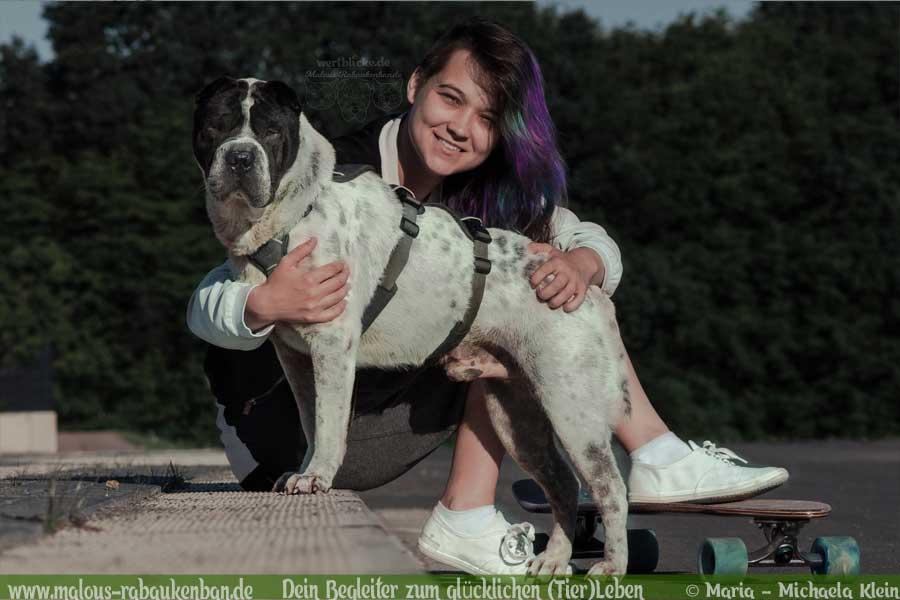 Hund mit Longboard