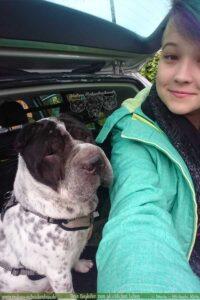 Mit Auto und Hund zur Arbeit