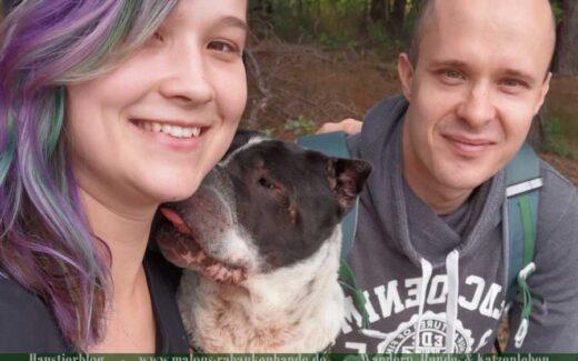 Malou, Daniel und Kingston als Portrait beim Wandern