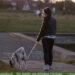 Ausflug mit Hund - was im Rucksack nicht fehlen darf!
